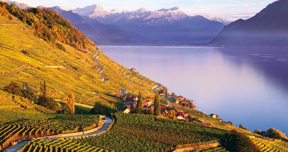 Lavaux, Vaud, Suisse