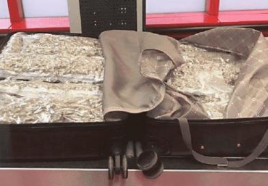 Un español olvida 8 kilos de marihuana en el tren
